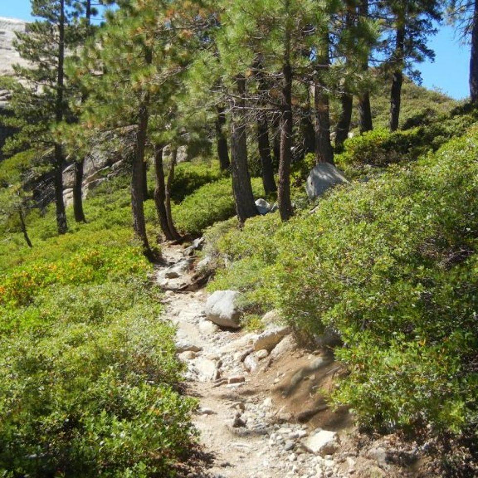 Everybody Thrive Hike and Bike Group