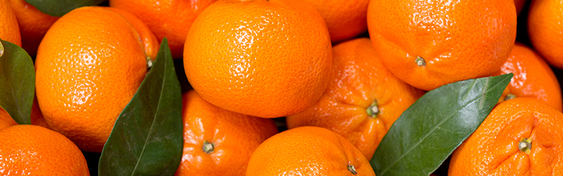 Mandarin Sales at Kaiser Permanente